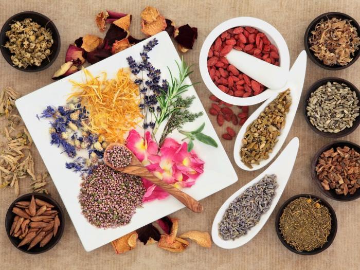 Curso de Fitoterapias e Plantas Medicinais